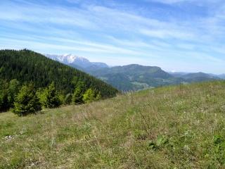 Die klassische Aussicht vor Erreichen des Waldeggerhauses.