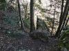 Der Drobilsteig führt über kleine Absätze empor.