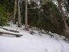 Winterwaldrast