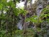 Die Große Klause hat fast schon Urwaldcharakter.