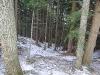 Einstieg vom Waldfreundehaus aus
