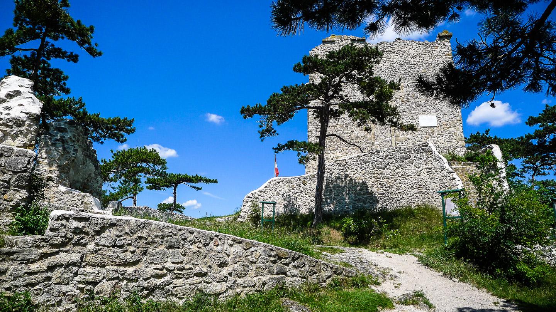 Klettersteig Burg : Mittelrhein klettersteig boppard