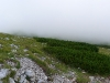 Die Rax im Nebel.