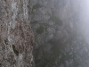 Wand im Nebel.