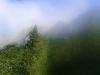 Nebel fällt ein.