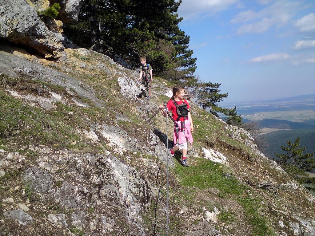 Hohe Wand Klettersteig : Gebirgsvereins klettersteig bergsteigen