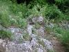 Das Highlight des Steigs: das Flatzer Loch ...