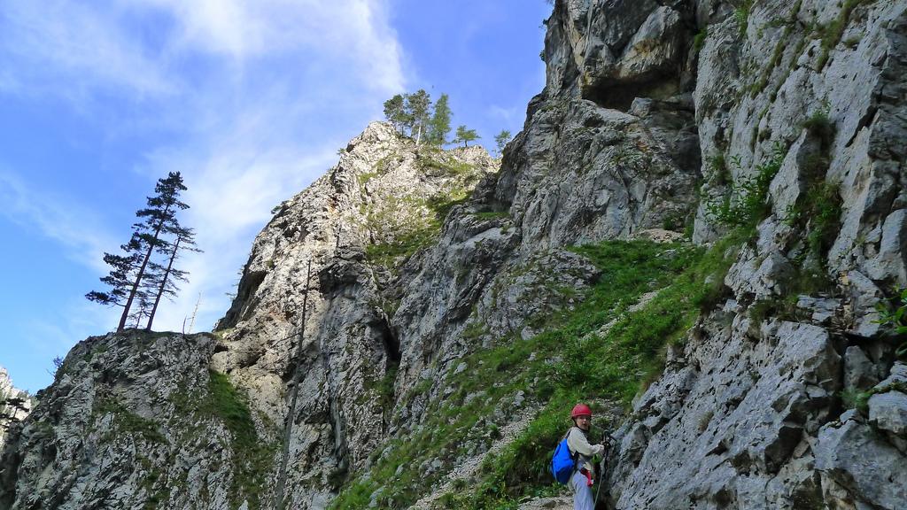 Klettersteig Rax : Mit kindern am teufelsbadstubensteig b auf die rax u alpenland