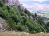 ... Aussicht (im Wald verläuft die Völlerin) ...