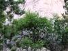 Die Völlerin besteht in erster Linie aus Stein, Geröll und schönsten Aussichten.