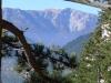 ... ein Blick auf den Schneeberg