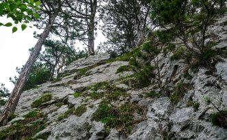 Hohe Wand Klettersteig : Htl klettersteig hohe wand youtube